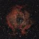 The Rosette Nebula,                                John Dias