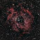 Rosette Nebula,                                David Stephens