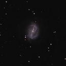 NGC 6217 (Arp 185) and UGC 10509,                                lowenthalm