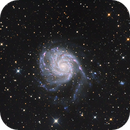 M101,                                Bram Goossens