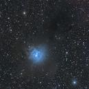 NGC7023 IRIS,                                Enrique