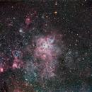 NGC 2070,                                Colin