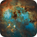 Tadpole Nebula (IC 410) and NGC 1893,                                Gary Lopez
