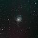 M101 Pinwheel Galaxy,                                Bart van der Pas