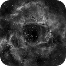 The Rosette Nebula NGC2237,                                JACL-Mono-Hα