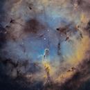 Elephant's Trunk Nebula - IC1396,                                Josh Jones