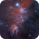 NGC2264 - the Cone, Christmas Tree, and Fox Fur in Monoceros -version2,                                Arnaud Peel