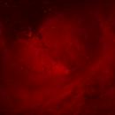 Cone Nebula and friends,                                David Johnson