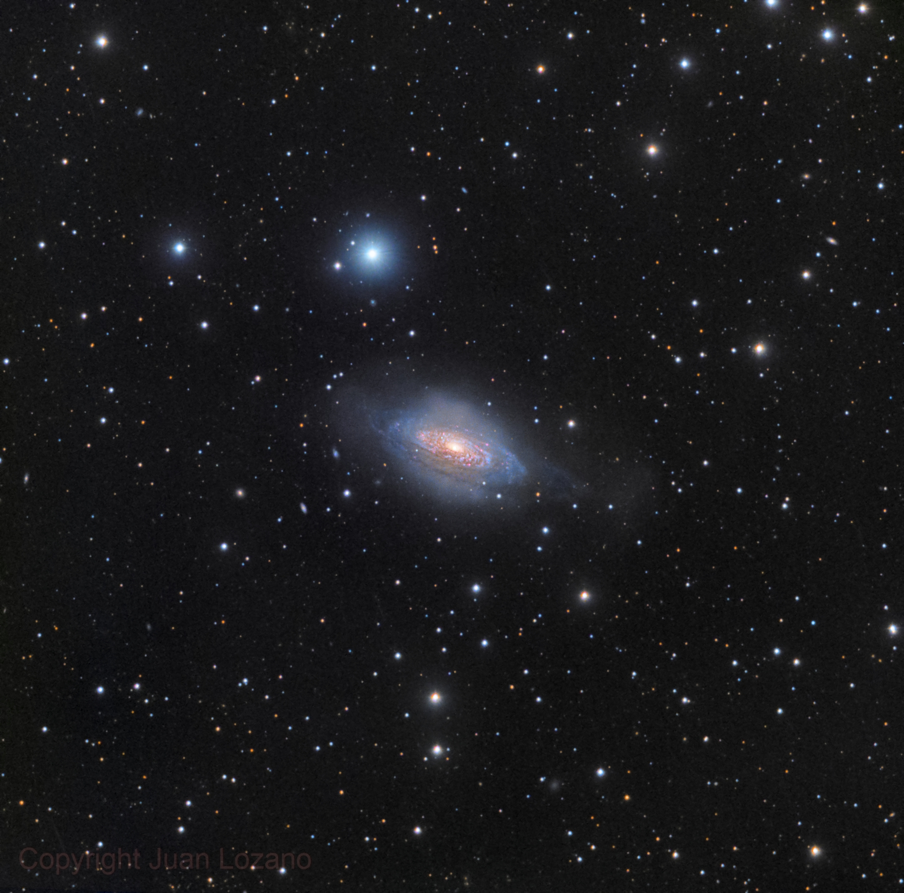 NGC 3521,                                Juan Lozano