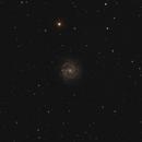 NGC 3184,                                Simon