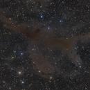 LBN 786 Region and Barnard 208,                                Jim Thommes