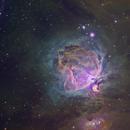 M42 aka Great Orion Nebula in Hubble Palette,                                Riccardo A. Balle...