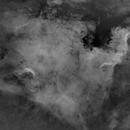 NGC 7000 - Ha (starless),                                oystein