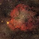IC 1396 Elephant trunk nebula / Canon 6D mod + Canon 400mm L f/5.6 / SW star adventurer / 3200iso,                                patrick cartou