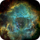 NGC2237 Rosette Nebula Full Frame in HST Palette,                                John Ebersole