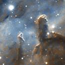 NGC 7822,                                Miguelyx