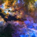 IC1318 - The Sadr Region,                                Trey Henderson
