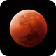 Supermoon Lunar Eclipse 2015,                                Olivier Ravayrol