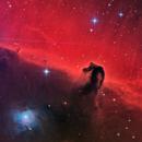 The Horsehead Nebula (Barnard 33),                                Luca Marinelli