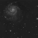 B M101,                                Eric Kallgren