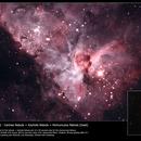 Eta Carinae plus Homunculus,                                Simon Bailey