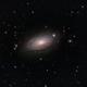 M63 - Sunflower Galaxy,                                Blackstar60