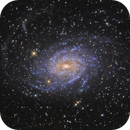 NGC6744 - A sibling of the Milky Way,                                Wellerson Lopes