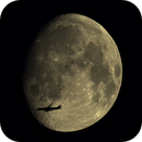 Mond Mosaik Flugzeug,                                Bruno