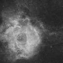 The Rosette Nebula (NGC2237) imaged in Hydrogen-alpha,                                Andrew Klinger