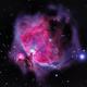 M42 M43,                                Mnar