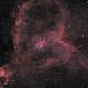Heart Nebula,                                Samuel