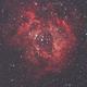 NGC 2237, nébuleuse de la Rosette,                                Yves-André
