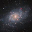 The magnificent Messier 33 Triangulum Galaxy,                                Barry Wilson