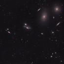 Markarian's Chain, M88, M91 and NGC4571,                                Sinan Arkin