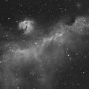 IC 2177, The Seagull Nebula,                                Steven Bellavia