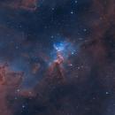 The heart of the Heart Nebula,                                Kathy Walker