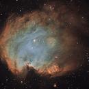 NGC 2174, The Monkey Head Nebula,                                Ruben Barbosa
