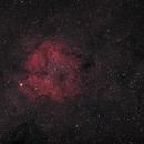 IC1396 widefield,                                Armin Lukas