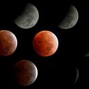 Flower Blood Moon Phases- 5/26/21,                                doug0013