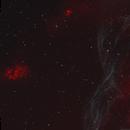 Vela Spiral Flame + Gum 18/19/20,                                Gary Imm