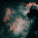NGC 7000,                                Dirk Lipinski