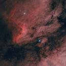 Pelican Nebula IC 5070,                                Luca Fornaciari