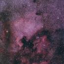 NGC 7000 North America and Pelican Nebula,                                Stephan Linhart