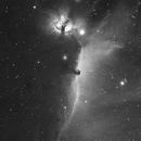 IC434+NGC2024,                                Fabio Semeraro
