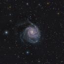 M-101 Type Sc Galaxy in Ursa Major,                                Stargazer66207
