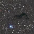 Barnard 174,                                sbakker