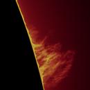 Sun H Alpha (Animation) on 2021-04-25 12:30 UTC,                                Ruediger