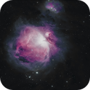 M42 - Orion,                                Travin