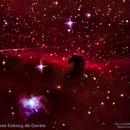 Horsehead Nebula (Barnard 33),                                Lopes Maicon