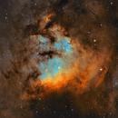 NGC7822 SHO,                                Malik